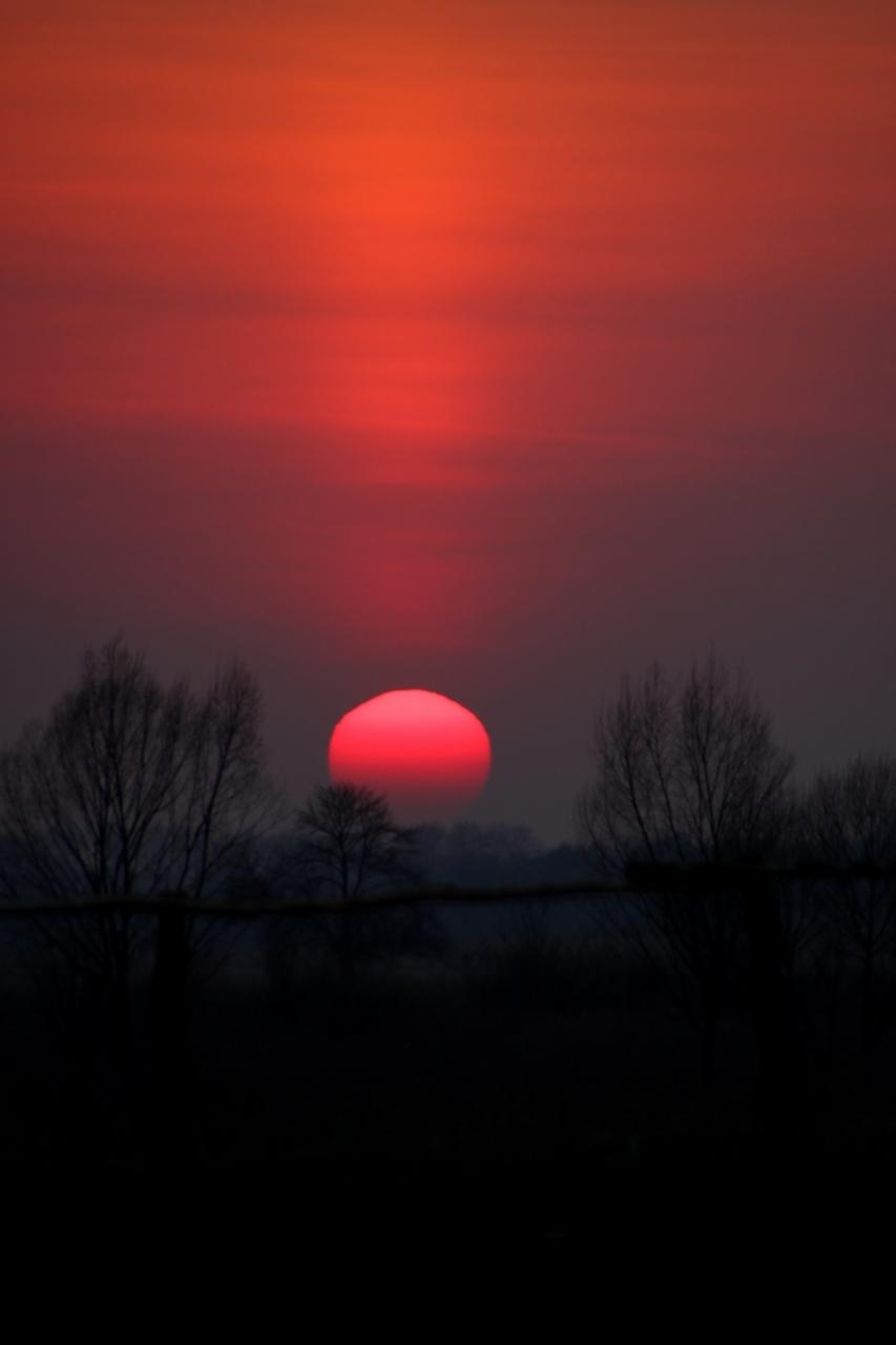 фермерское солнце и мрак картинки попросил снимать его